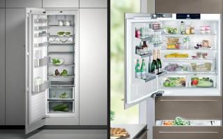 Лучшие встраиваемые холодильники для дома
