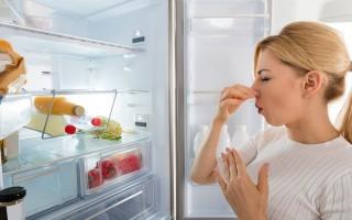 Методы удаления неприятных запахов из морозильной камеры
