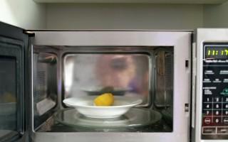 Внутреннее покрытие микроволновой печи: какое лучше?