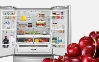 Лучшие недорогие, но качественные холодильники