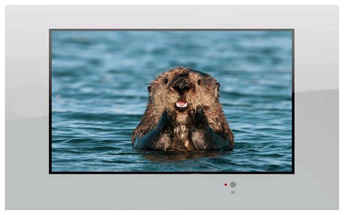 AquaView 26 Smart TV